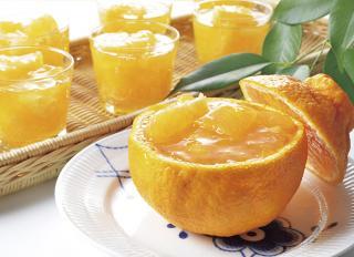 国産柑橘ゼリー