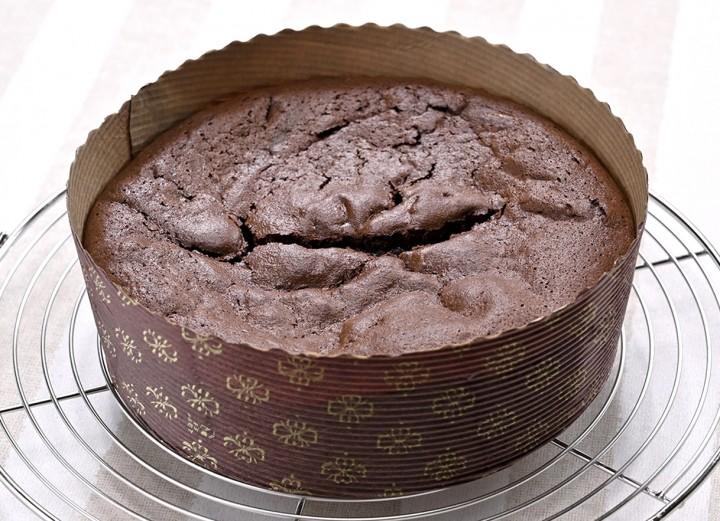 Gato_chocolat_kan04cut